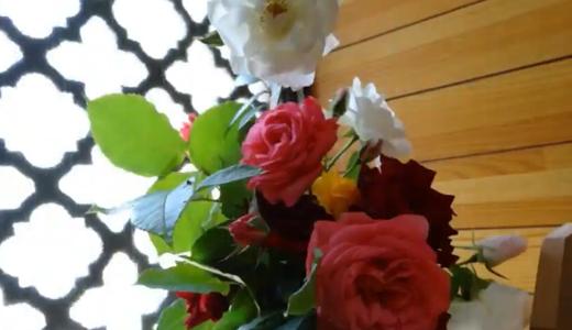 母の日に薔薇とカーネーションのプレゼント