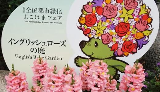 イングリッシュ・ローズ・ガーデン(港の見える丘公園)横浜美しいバラの庭園(スライドショー)