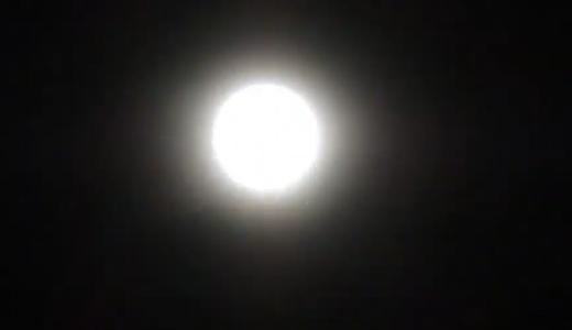 月夜の百合、山羊座満月の夜