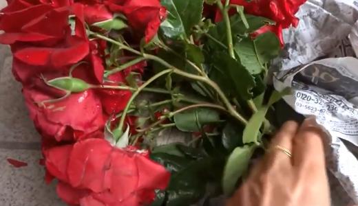 プレゼントの赤いバラ!玄関の花瓶が一気にゴージャス♪