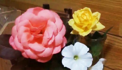 ピンクのバラ・キスミーの花びらは、くるんと可愛い!